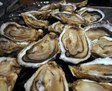 oysters are known as a men's performance booster